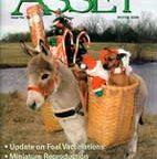 ASSETmagazine